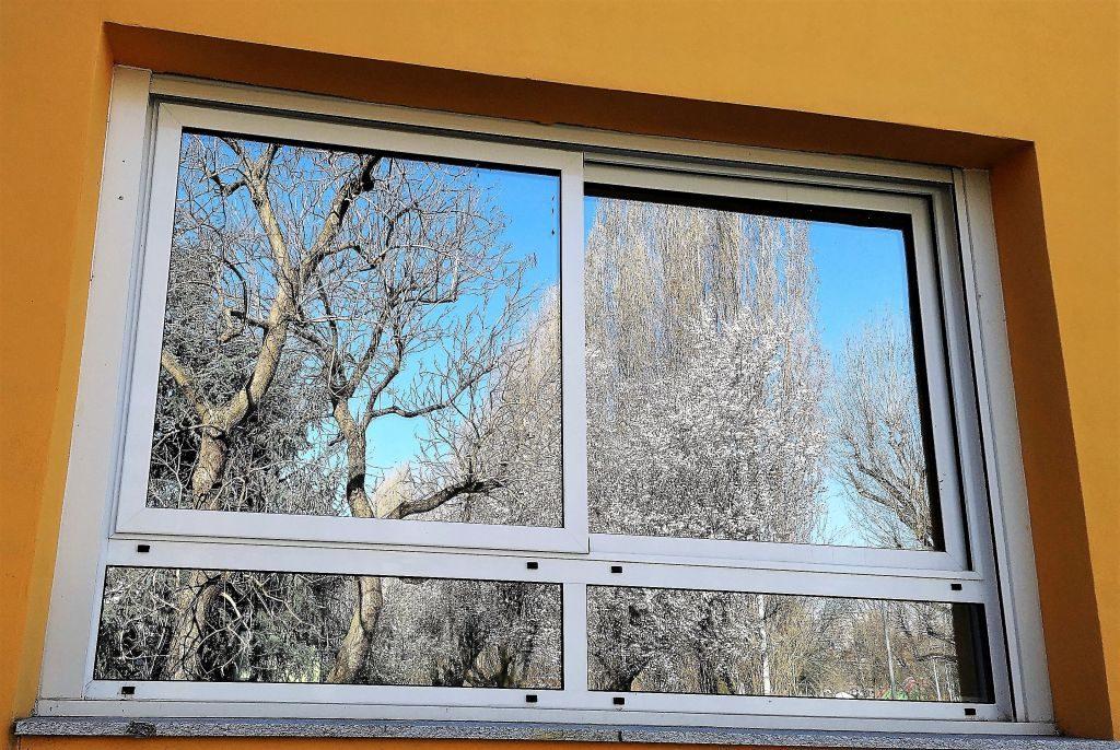 La primavera chiama sui vetri del Campioni