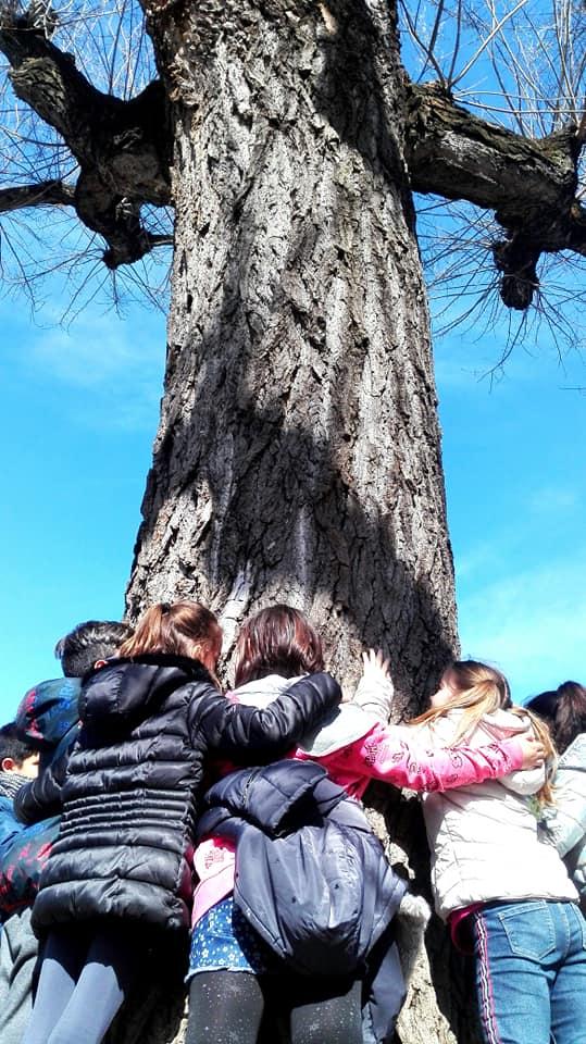 Bambini intorno all'albero. Fotografia di Marzia Cassandro